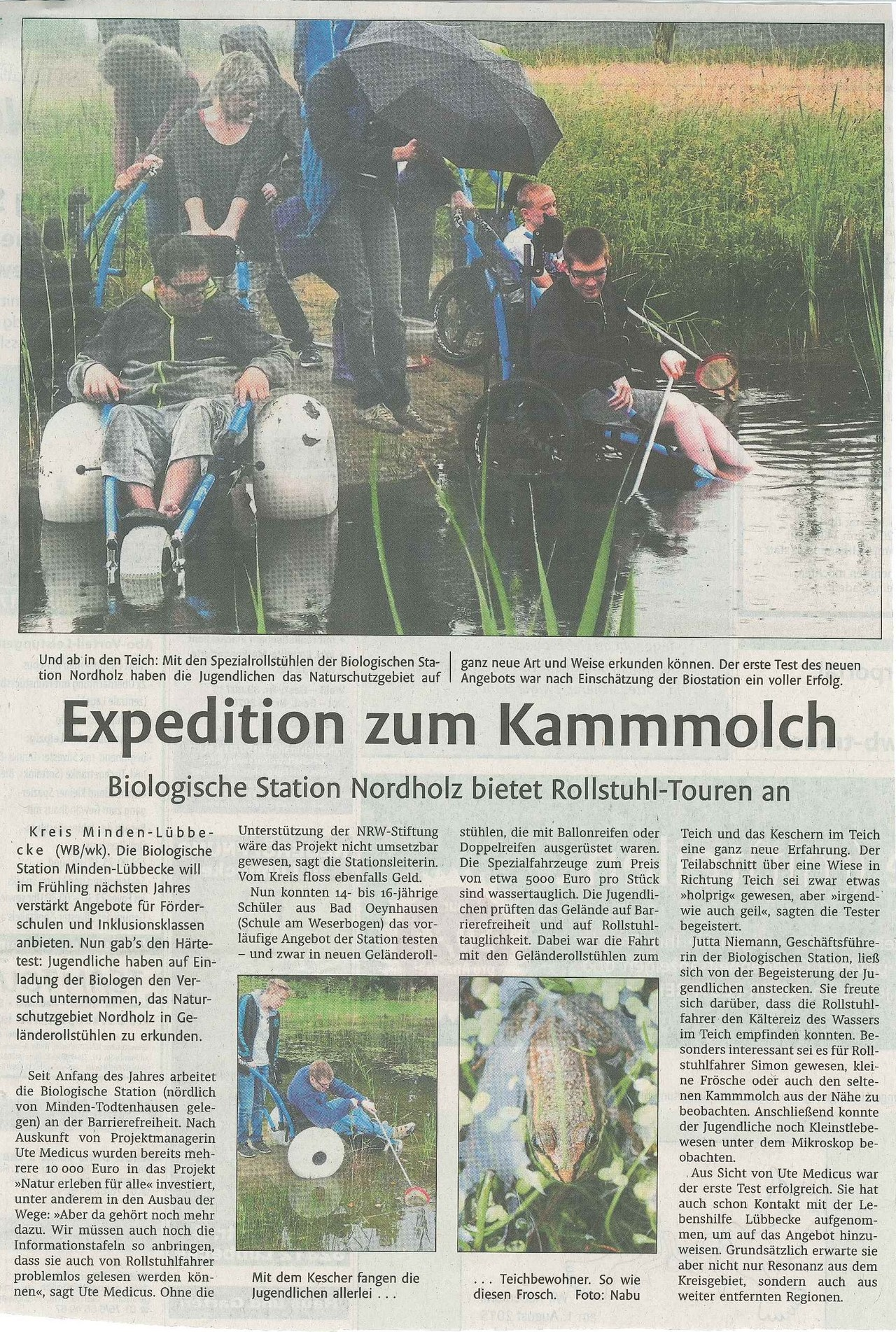 Expedition zum Kammmolch